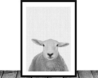 Nursery Wall Art Decor Nursery Print Animal Nursery Print lamb print Sheep Print baby boy nursery minimalist print livestock nursery decor