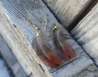 Orange and Brown Pheasant Feather Earring on Gold Wires