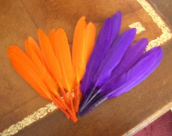 20 feather Indian orange & purple ref 2466