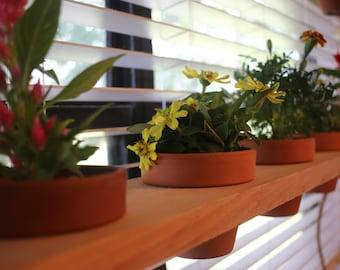 Hanging planter shelves - Cedar shelving - Plant display