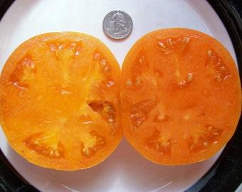 Heirloom Tomato- KELLOGG'S BREAKFAST- 80 to 90 day- orange- Indeterminate- 25 seeds
