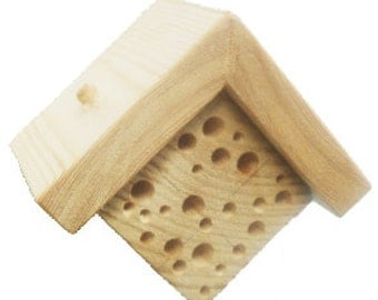Mini Bee and Bug House