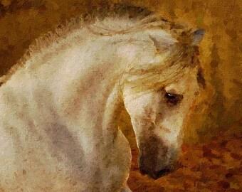 Original Horse Oil Painting, Contemporary Fine Art, Animal ArtPet Portrait,  horse memorial, best etsy shop, top etsy seller best selling