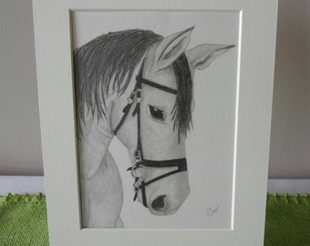 Horse Pencil Drawing, Horse Drawing, Pencil Sketch, 10x8 Drawing, Horse Pictures