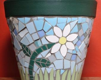 Daisy Flower Pot