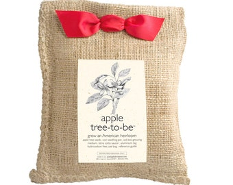 Apple Tree to Be – Garden –  Gift Package – Mothers Day – Holiday – Teacher Gift – Hostess Gift – Outdoor Plant – Seed Grow Kit