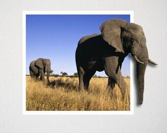 3D Elephant Wall Sticker