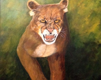 Angry Mountain Lion