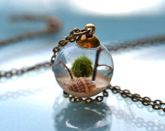 White Dove Live Marimo Moss Ball Terrarium Necklace // Terrarium Jewelry // 101 % Natural Sand from Bahamas