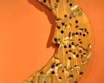 Holie Moon Toredo Wood