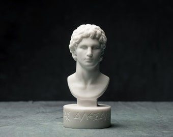 MARBLE bust of Alexander the great statue carved Greek marble artist sculpture