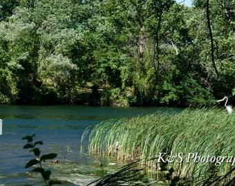 Canal, Grass Photograph