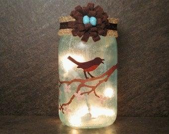 Robin Mason Jar Light