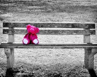 Pink Teddy Bear on a Park Bench