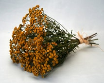 WILD FLOWERS Tansy Natural dried YELLOW flowers bouquet-Flower arrangement-Rustic Natural home Tansy decoration-Craft supply-Rustic wedding