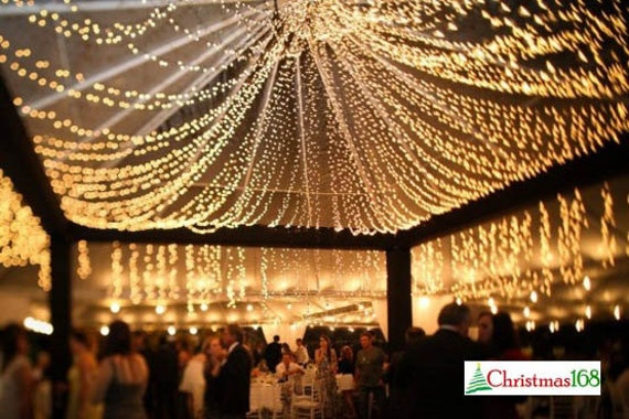 32 Feet 100 Led String Fairy Lights Wedding By Perfectholiday