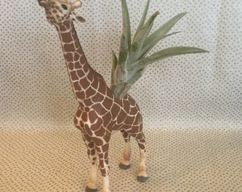 Vintage toy giraffe air plant holder + air plant