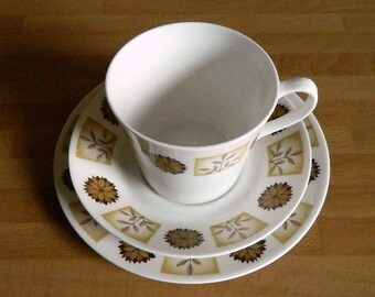 Vintage Royal Vale China Trio, Cup Saucer and Tea Plate, Autumnal, Pattern 8216, Retro China