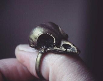 Nimmermehr Kollektion Rabenschädel Ring