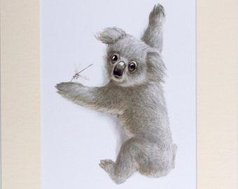 Baby Koala Print (A3 Mount)