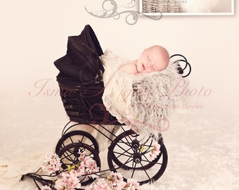 Beautiful Digital Newborn Photography Prop ( Old Baby Carriage )