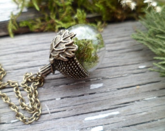SALE!  Real Moss Necklace, Acorn  Necklace, Terrarium Necklace,  Glass Acorn Necklace, Green Pendant