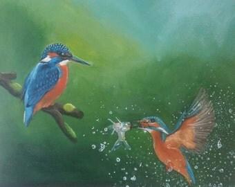 Kingfisher pair