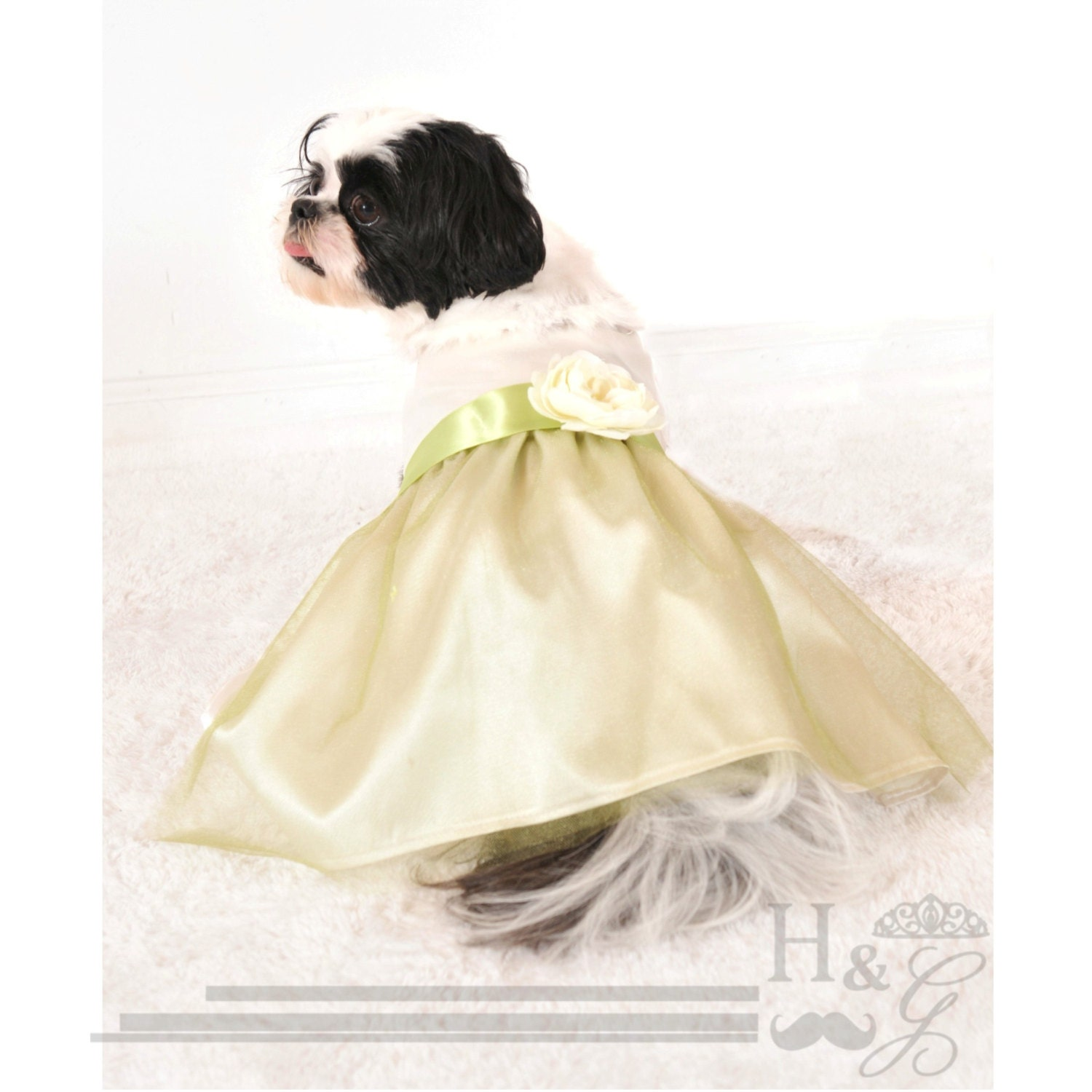 Custom Dog Bridesmaid Dress Dog Wedding Dress Custom Dog