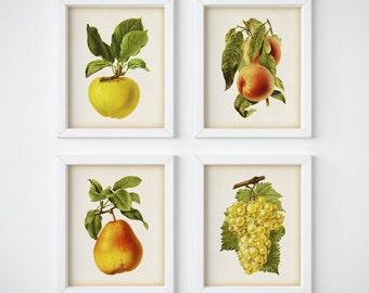 Kitchen art, Kitchen printable art, Set of 4 prints, Kitchen print set, Fruit print set, Fruit art print, 8x10 art print, 11x14 art print