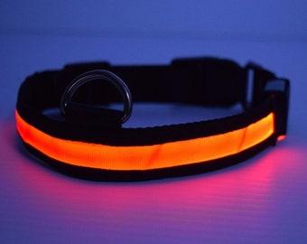 LED lighted Red Dog Collar