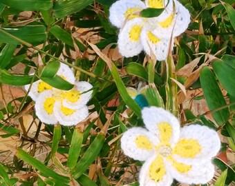 Frangipani Flower Crochet Pattern