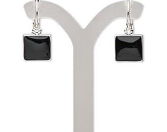 Black Elegance Silver Earrings