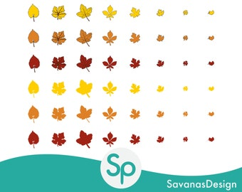 Fall Leaves Clip Art, Autumn Leaves Clip Art, Autumn Leaves Clipart, Fall Leaves Clipart, Clip Art Leaf, Clipart Leaves, Leaves PNG