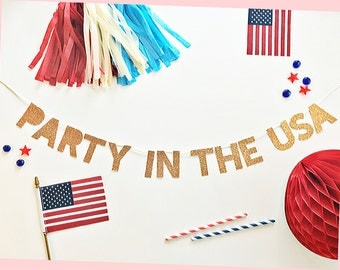Election Party Banner | Election Party | Party In The USA Banner