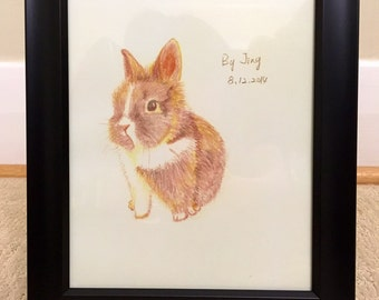 bunny rabbit portrait color pencil drawing sketch cute illustration