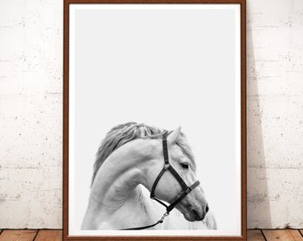 Horse Print, Horse Photo, Horse Photography, Horse Art, White Horse, Instant Download, Horse Printable Art, Black And White Prints