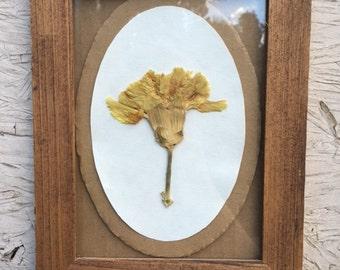 Yellow Carnation / Wood Frame