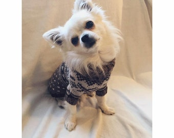 Chihuahua Wool Sweater