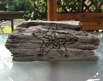 Driftwood starfish woodburn