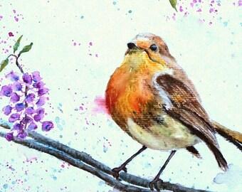 "Framed original watercolour animals birds ""Robin"""