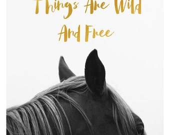 Horse Photograph - Nature Photography - Black and White Art - Horse Art - Modern Art - Quote - Typography Print - Oversized Art - Bock