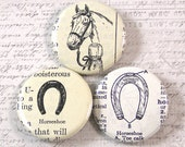 Horse and Horseshoe Pinback Button Set