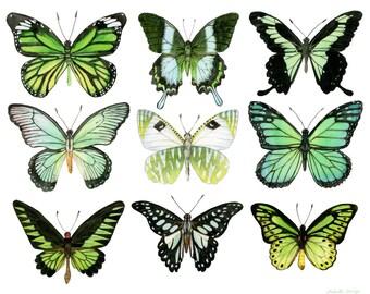 "Green Butterflies Watercolor Print - Butterfly Art - Butterfly Watercolor - Wall Art - Home Decor - Sizes 5""x7"" 8""x10""  11""x14"""