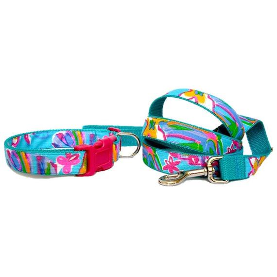 Teal Dog Collar And Leash