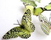 NEW YEAR SALE 6 x Special Olive Green 3D Butterflies great for Weddings, Crafts