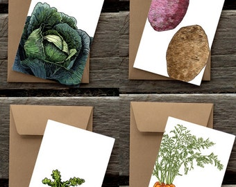 CSA Assortment of 8 Flat Panel Cards and Envelopes