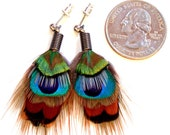 Tiny Feather Earrings with Posts- All Natural Colors- Ready to Ship
