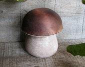 Fine Art Porcini - King Bolete - Cepe de Bordeaux - Boletus edulis Basidiomycota Mushroom Wooden Ring or Trinket Box by Tanja Sova
