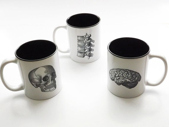 Nurse Gift coffee mugs Anatomy physical therapy skull brain spine medical school graduation doctor office goth kitchen science neurology