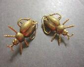 Beetle Earrings, Scarab, Bug Earrings, Insect Earrings, Gothic Jewelry, Geekery, Victorian Beetles, Woodland Bugs, Antique Brass, 14k GF